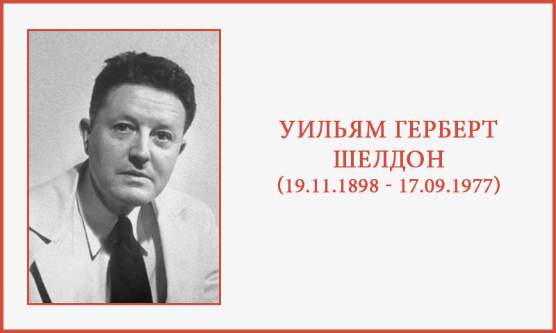 Уильям Шелдон: конституциональная теория темперамента