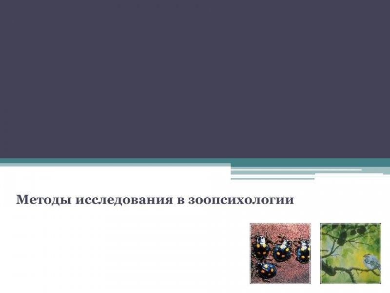 Методы исследования в зоопсихологии