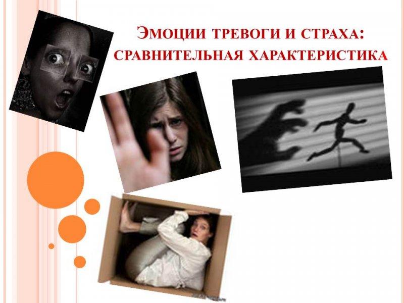Эмоции тревоги и страха: сравнительная характеристика