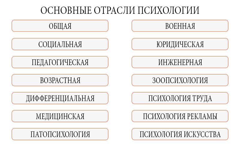 Чуфаровский Ю В Психология оперативно розыскной и следственной  Основные отрасли психологии